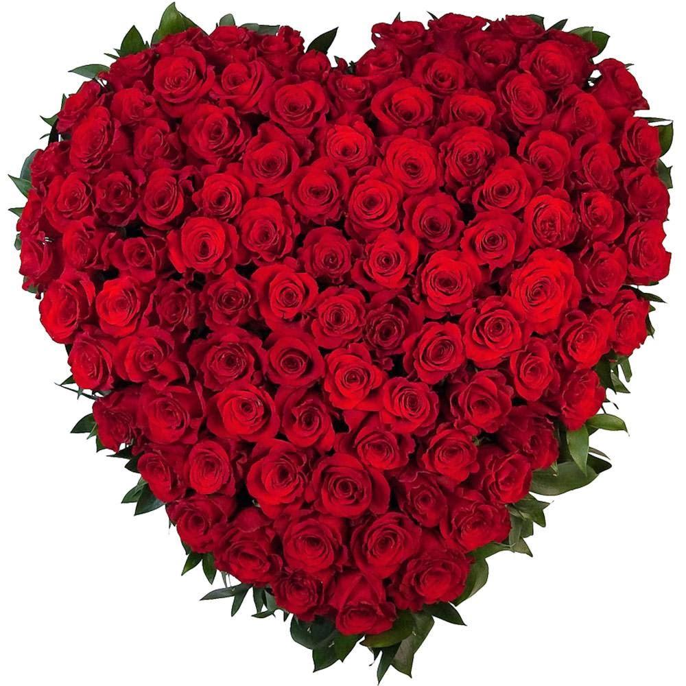 hinh anh hoa dep 8 3 2 1